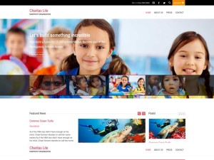theme wordpress charitas